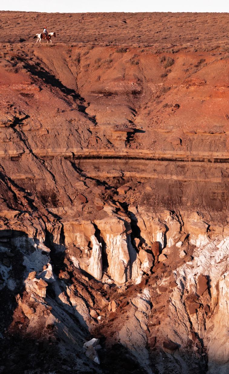 Navajo Horseman by Stu Jenks